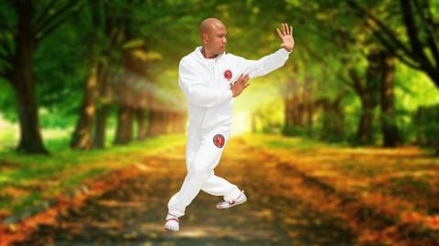 Tai Chi - Yang style- Chi Kung