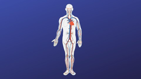 Anatomy and Pathology required for Medical Coding Training