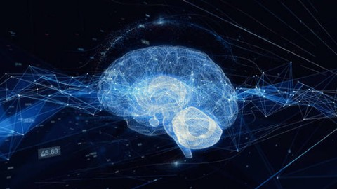 Neuroplasticity Systems To Rewire Your Brain