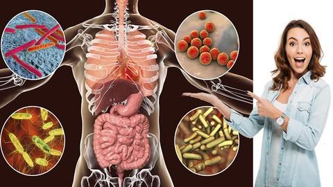 Microbiota Intestinal Y Permeabilidad Intestinal