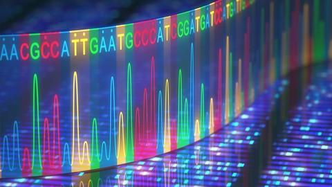 Introduction to Human Genetics