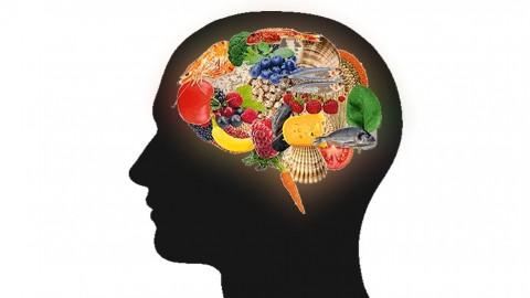 Netcurso-nutricion-inteligente-fundamentos