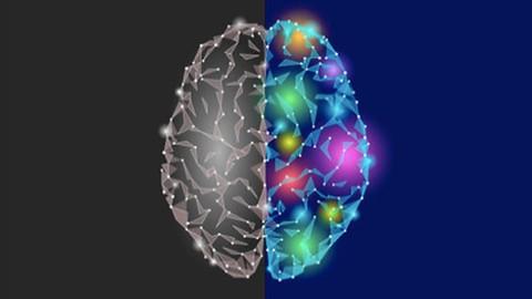 Netcurso-the-complete-emotional-intelligence-masterclass