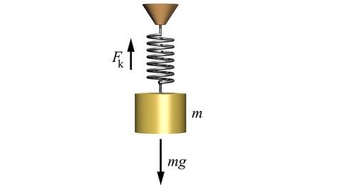 Periodic Motion