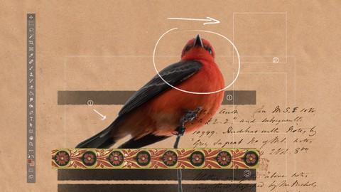 Workflow for digital collage illustration
