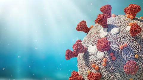 Netcurso-the-symbolic-meaning-of-the-coronavirus