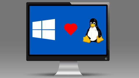 Netcurso-windows-subsystem-for-linux