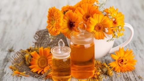 Herbalism :: Professional Herbalist Certificate
