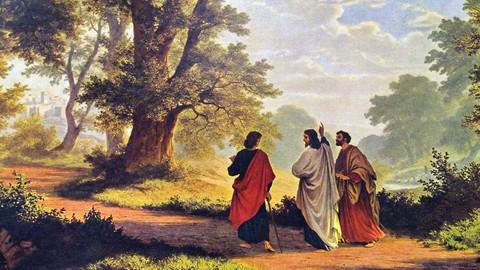 Netcurso-bible-study-a-resurrection-of-hope-luke-24