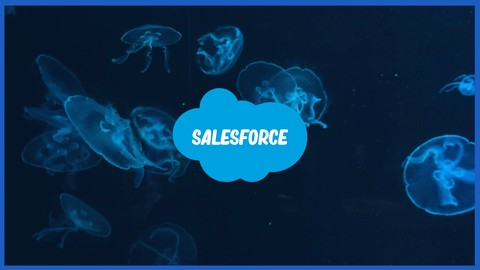 Netcurso-mtfflo001-master-the-force-introduction-to-salesforce-flows