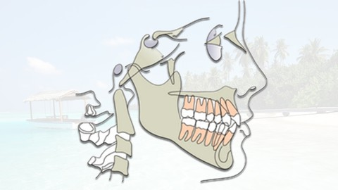 Orthodontic Treatment Planning for dental professionals