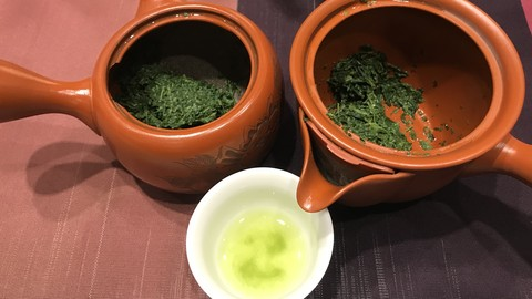 Free Tea Tutorial - Beginner's Guide to Japanese Green Tea