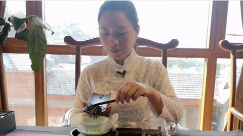 Free Tea Tutorial - Master Chinese Tea Art in One Day(Audio Only with PDF File)