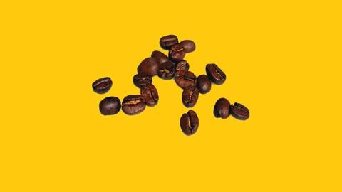 Netcurso-spring-bean-creation-a-practical-approach