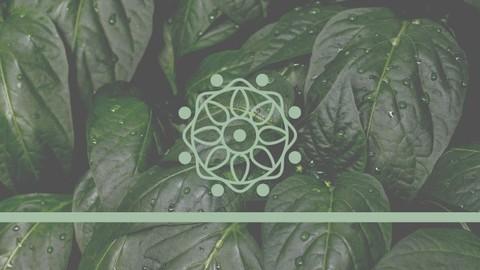 Introduccin a la Meditacin