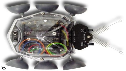 Netcurso-learn-how-to-build-a-ladybug-mobile-robot-from-scratch-doit