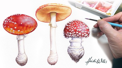 Paint Realistic Watercolor and Botanicals - TOADSTOOLS