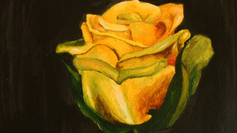 Netcurso-water-colour-painting-of-an-ear-step-by-step-tutorial