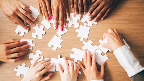 Netcurso-align-culture-values-to-move-beyond-diversity-inclusion