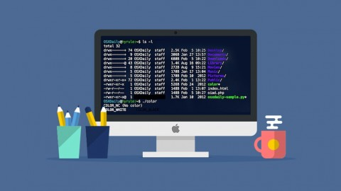 Learn the Mac Terminal Today