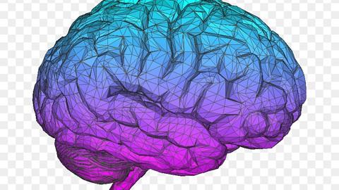 Netcurso-behavior-health-symptom-awareness