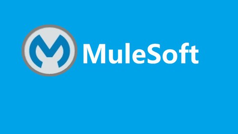 Netcurso-mulesoft-and-salesforce-integration-real-time-project