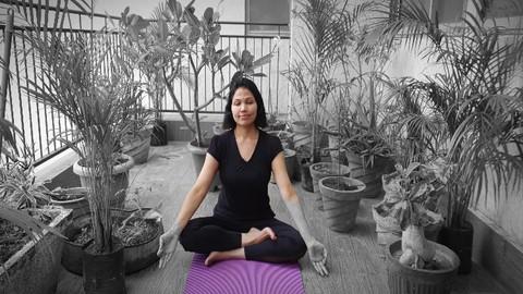 Netcurso-yoga-for-a-zen-mind-the-subtle-practices-for-a-calm-mind