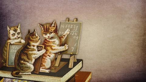 Quantum Computing and Quantum Machine Learning