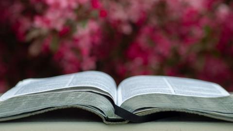 Netcurso-learning-the-book-of-zephaniah