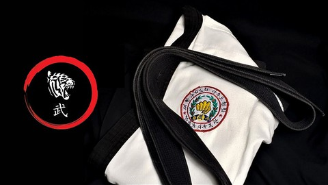 Karate:  Tang Soo Do Advanced Techniques and Forms