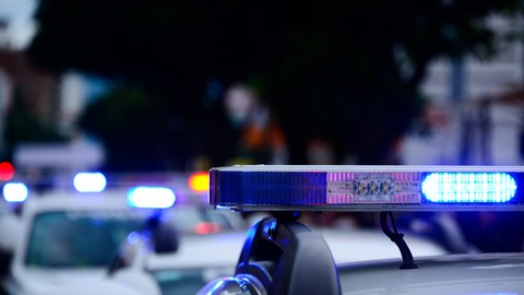 StudiGuide 2: The California Criminal Justice System