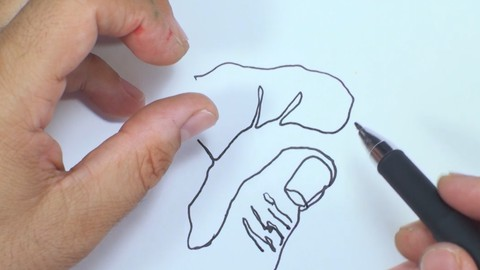 Netcurso-how-to-draw-your-hands