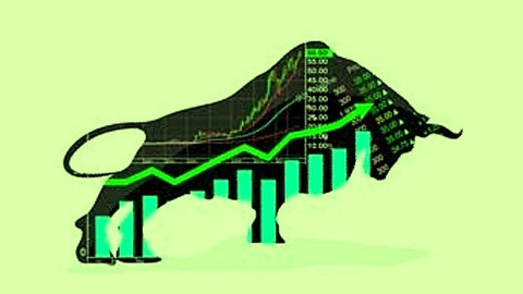 Stock Market Investing Beginners with Real examples