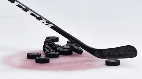 Netcurso-learn-how-to-improve-your-hockey-skills-from-home