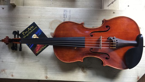 Violin for Beginners 1: Introduction to straight bowing