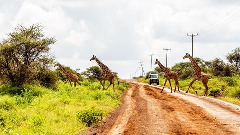 Swahili for Tourists
