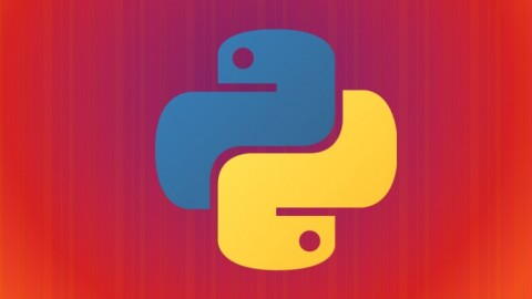 Netcurso-introduction-to-python-programming-language-by-practising
