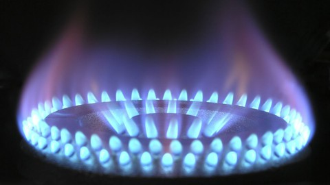 Netcurso-steam-boiler-its-types