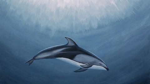 Wildlife Art Underwater