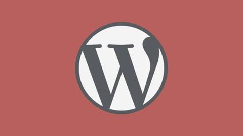 WordPress 101- Marketing Automation Ultimate 2021