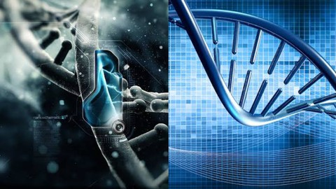 Netcurso-practical-bioinformatics-play-with-genes-on-your-screens