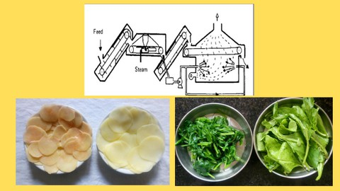 Netcurso-importance-of-blanching-in-food-processing
