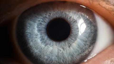The Ultimate Eye-Gazing Meditation Workshop Coupon