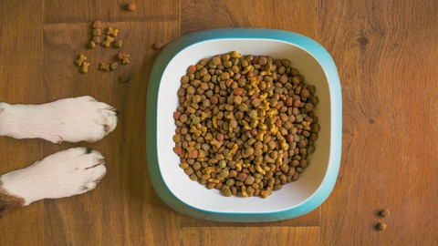 Netcurso-improve-your-dog-food-pet-kibble-raw-home-cooked-dog-nutrition