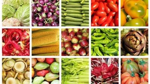 Netcurso-nutricion-sana-alimentacion-util-frente-al-estres