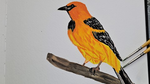 Painting a Bird with Gouache