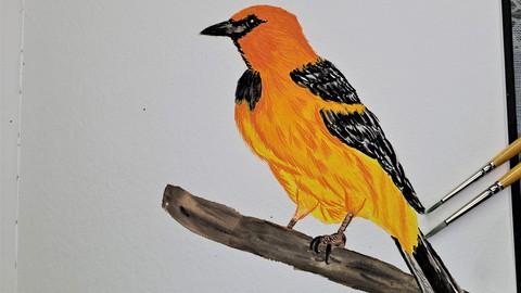 Netcurso-painting-a-bird-with-gouache