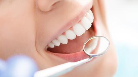 Netcurso-dental-course-prepare-your-stl-teeth-model-for-3d-printer