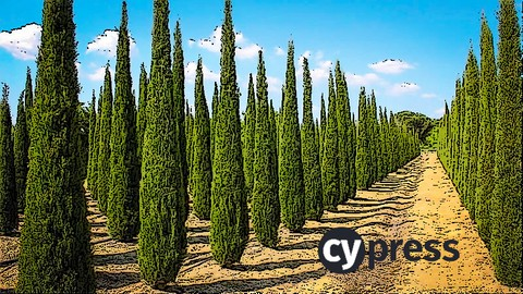Netcurso-master-cypress-in-15-minutes-a-day