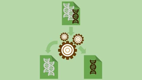 Practical Bioinformatics I